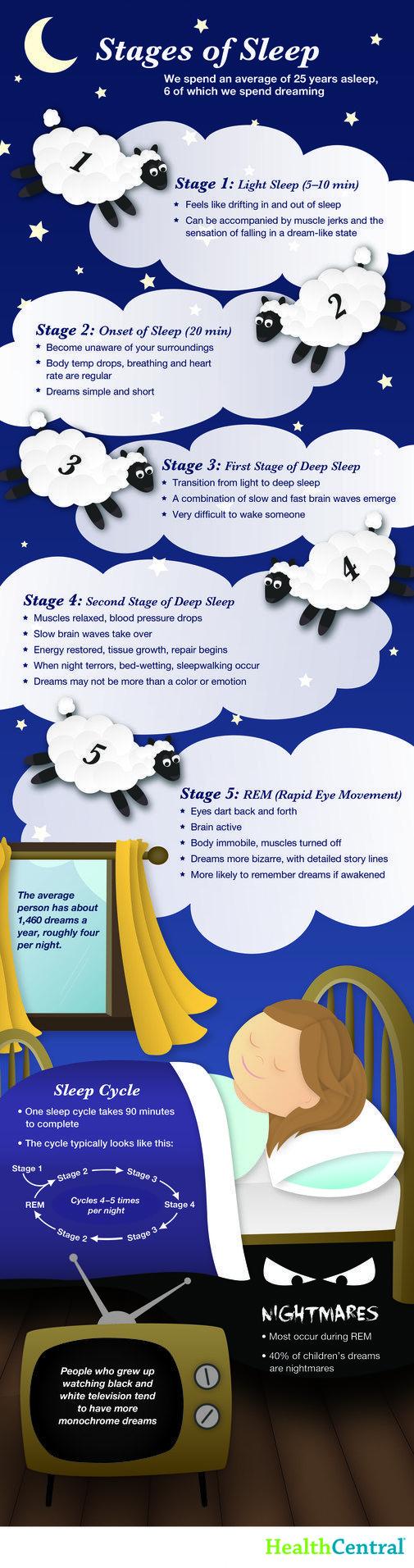 (INFOGRAPHIC) Stages of Sleep - Sleep Disorders