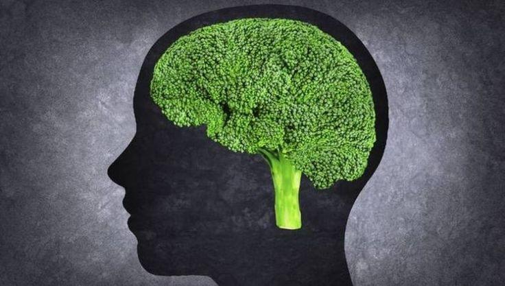 Έξι βιταμίνες και μέταλλα που ενισχύουν την εγκεφαλική λειτουργία