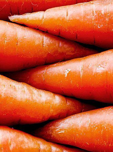 Close-up of orange carrots [Daucus carota; Family: Apiaceae] - Flickr - Photo Sharing!