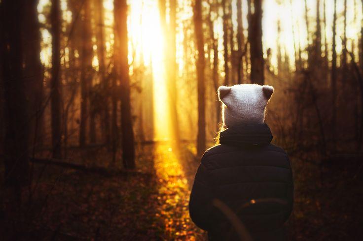 sunlight by Anastasia Krylova on 500px