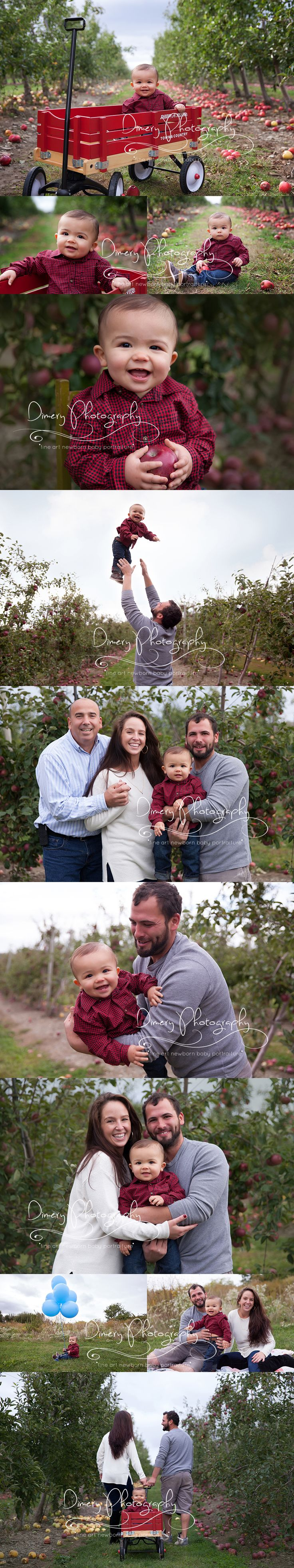 apple orchard family portraits, outdoor baby photography, fall photography, baby in wagon pose, one year old baby  © Dimery Photography 2015