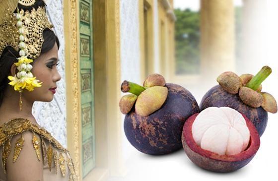 Garcinia Cambogia, l'alleata del peso forma - L'estratto dei frutti di questa pianta tropicale può promuovere l'equilibrio del peso corporeo. #garcinia #diet #dieta #peso http://www.drgiorgini.it/index.php/approfondimenti/dimagranti/garcinia-cambogia-alleata-del-peso-formapk_campaign=PIN-ARTGarcinia