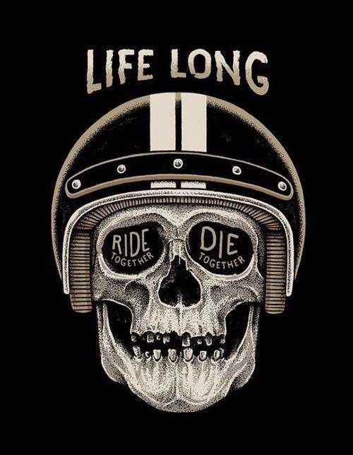 #illustration #motorcycles #design   caferacerpasion.com                                                                                                                                                                                 Más