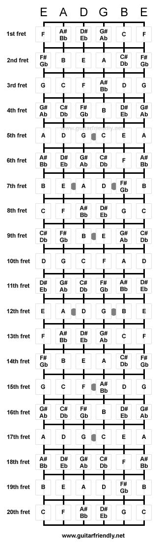 Because I'm teachin' myself the guitar... good to know. xD Fretboard Note Chart