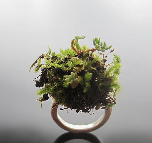 """moss ring"""" I had to highlight by Maria Apostolou"""