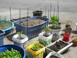 Kuvahaun tulos haulle urban gardening