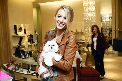 Blake Lively and her dog Penny