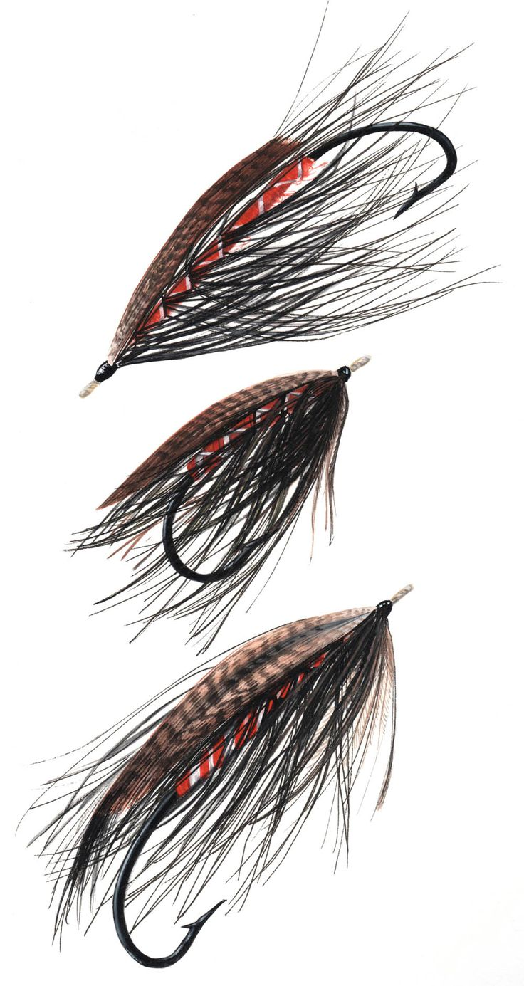 181 best spey flies images on pinterest fly tying for Fly fishing houston