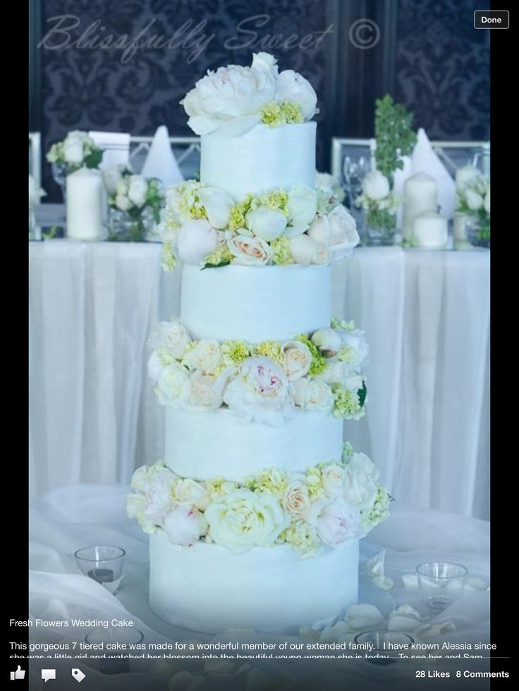 soft icing recipe for wedding cake 106 best images about wedding cakes soft frosting on 20277