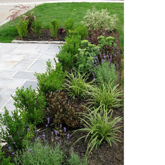 Front residential garden
