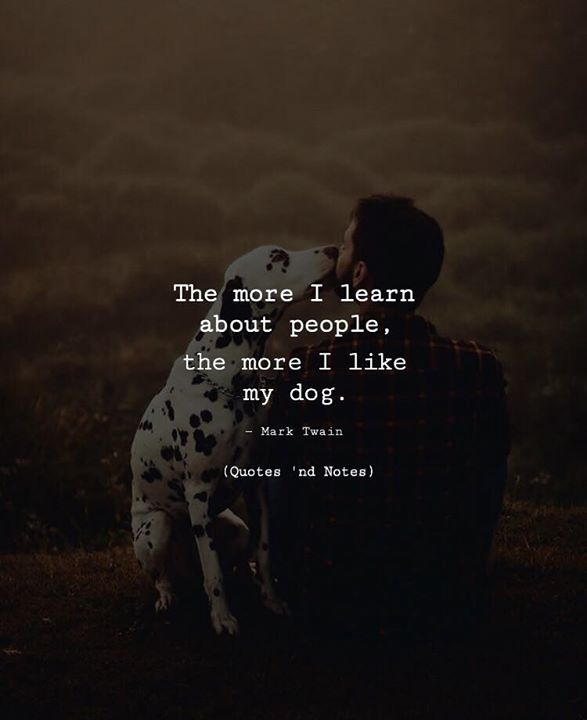 The more I learn about people the more I like my dog. Mark Twain via (http://ift.tt/2fztztZ)