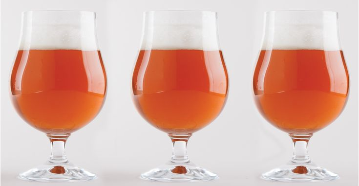The Bitter Earl English Pale Ale Recipe Primary