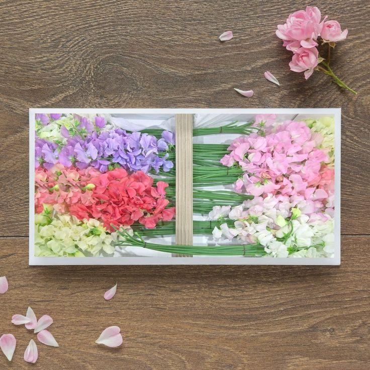 Single Blank Card by landscape photographer Nina K Claridge - Sweet Peas