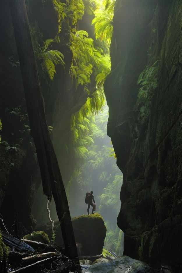 Claustral Canyon in the Blue Mountains
