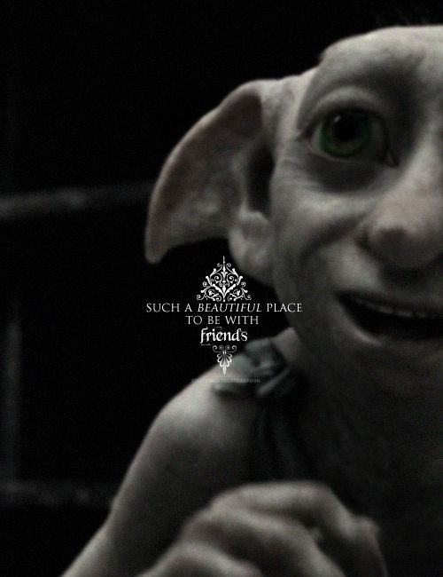 137 Best Images About Hobbit On Pinterest Polymers Studios And Dobby Harry Potter