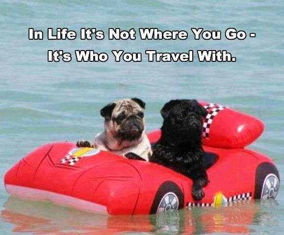 In life it's not where you go, it's who you travel with. thedailyquotes.com