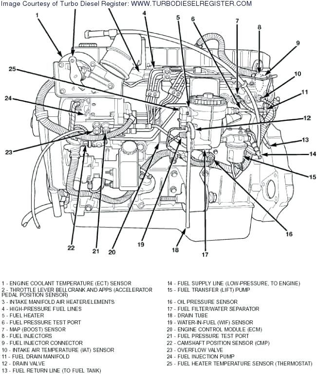 astonishing 1999 dodge 3500 5 9 diesel ecm wiring diagram