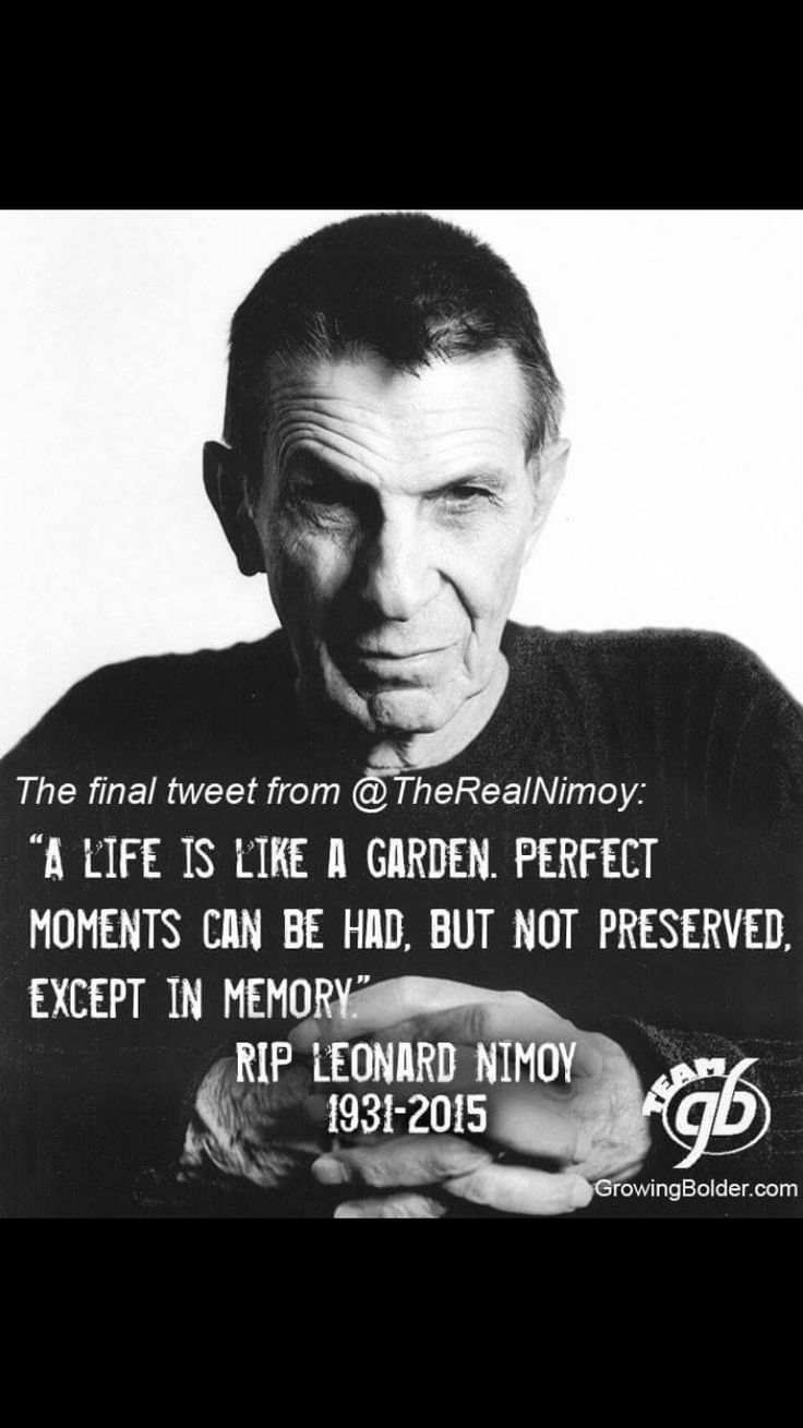 Leonard Nimoy Quotes 39 Best Quotessayings Images On Pinterest  True Words Quote And