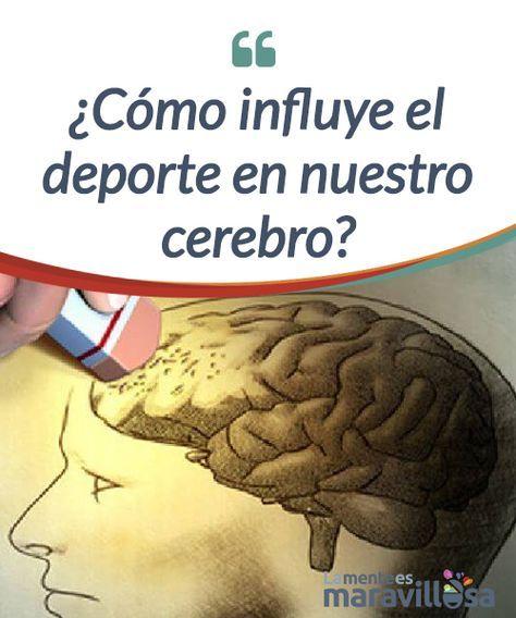 ¿Cómo influye el deporte en nuestro cerebro? Realizar deporte ofrece numerosos beneficios, y uno de los #beneficiados de nuestro organismo es el #cerebro tal y como apuntan diversos estudios #científicos. #Psicología