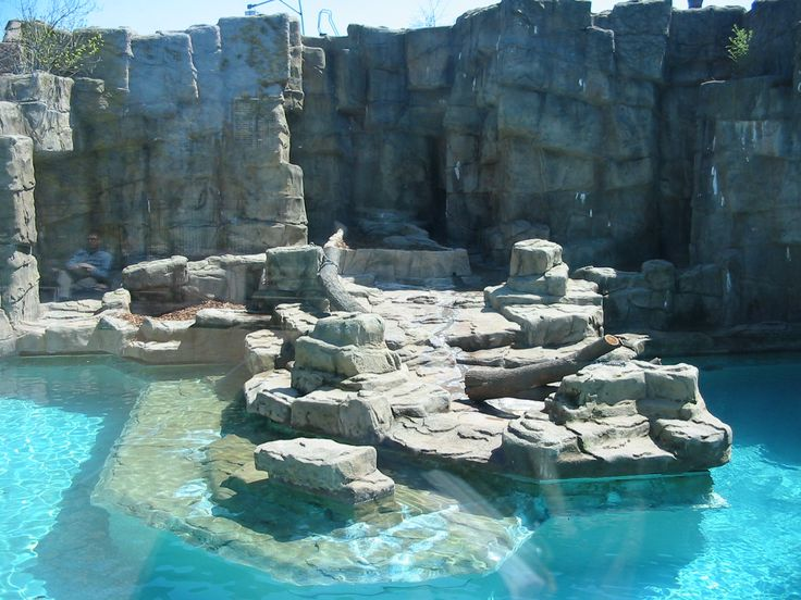 31 best images about animal enclosures on pinterest for Pool design dessau