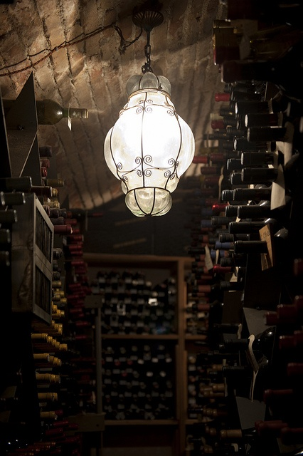 My kinda wine cellar...very romantic.  Wine cellar - detail