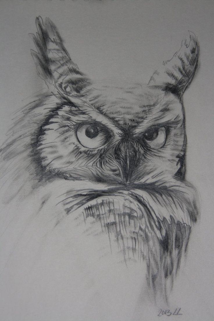 Hoe teken je een Uil - realistisch