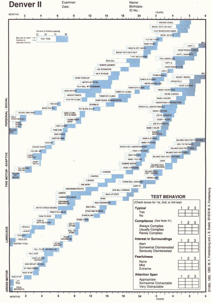 Medicina oncologica bonadonna pdf merge