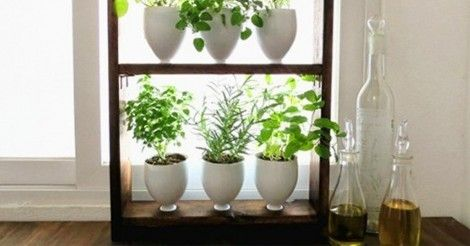 Cómo+hacer+un+pequeño+jardín+aromático+vertical+paso+a+paso
