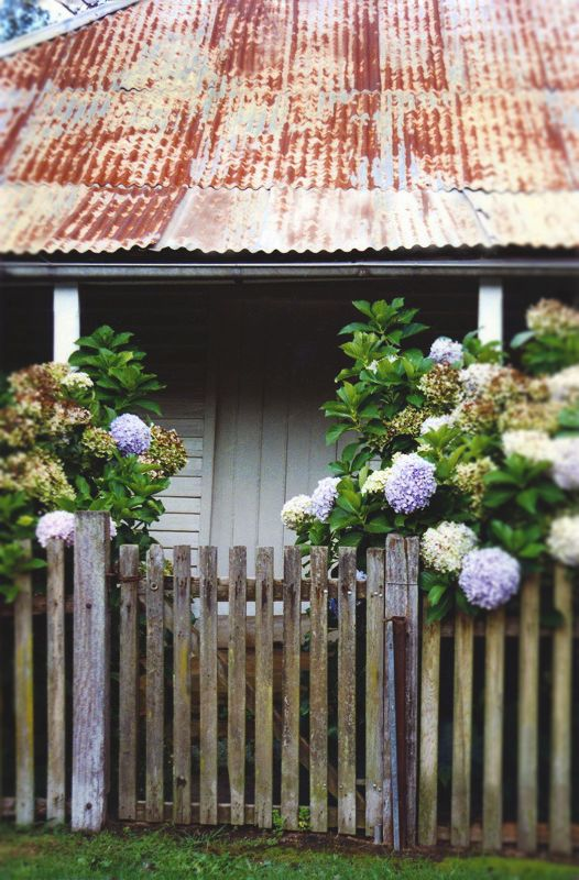Hydrangia Cottage in Berrima, N.S.W., Australia.