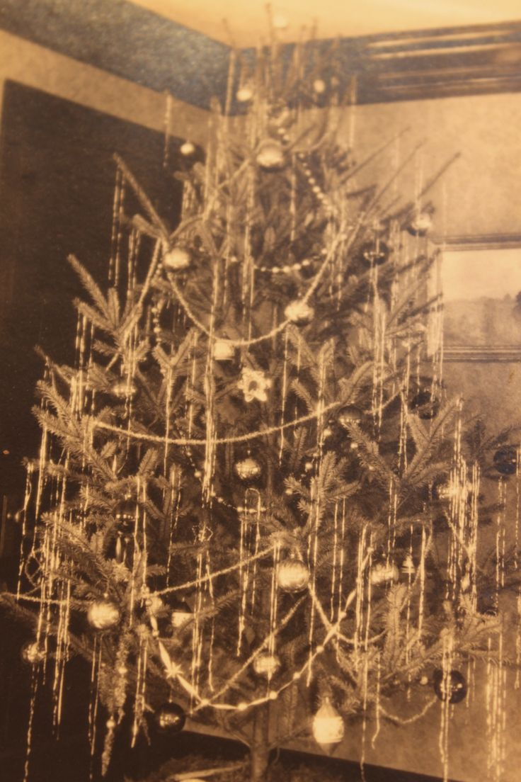Vintage christmas trees and putzes 1910 - Christmas Tree 1930s