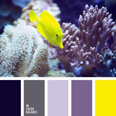 бледно-желтый, бледно-лиловый, желтый, оттенки фиолетового, палитра цветов, подбор цветового решения, пурпурный, розово-лиловый цвет, светло-фиолетовый, темно-фиолетовый.
