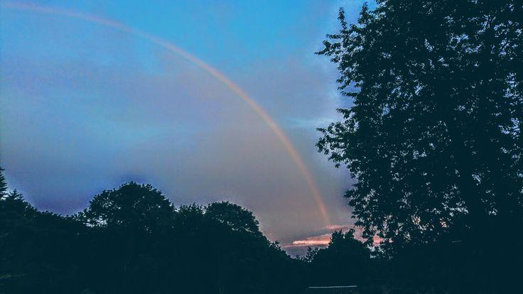 #rainbow @lafôret