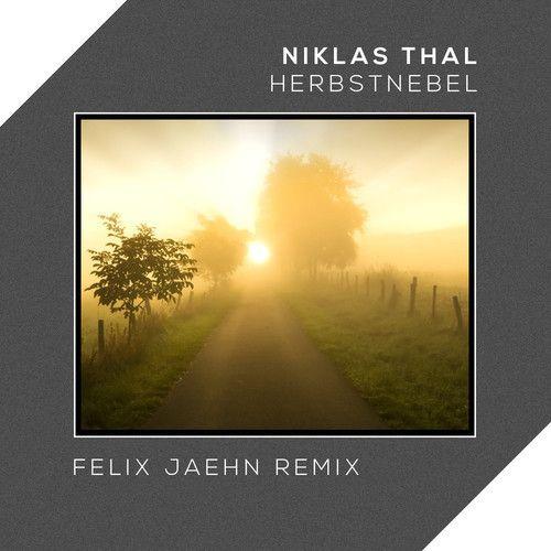 Niklas Thal - Herbstnebel (Felix Jaehn Remix)