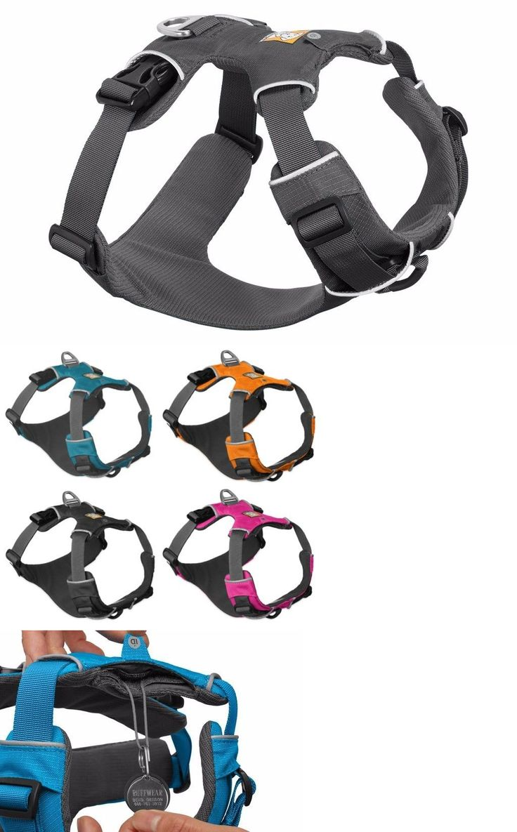 Harnesses 66783: Ruffwear Front Range Adjustable Padded Dog Harness With Reflective Trim- Gray -> BUY IT NOW ONLY: $37.5 on eBay!