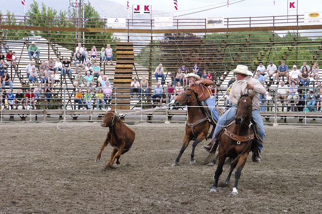 Utah County Fair in Spanish Fork Fiesta Days & Rodeo has a wide variety of activities for the whole family!