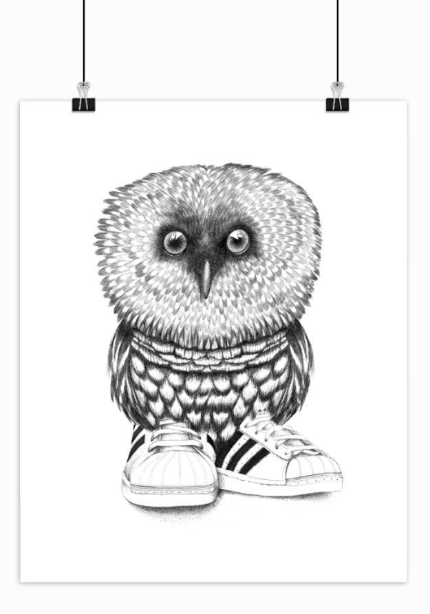 Art, drawing, Animal, design, tusch, ink, owl