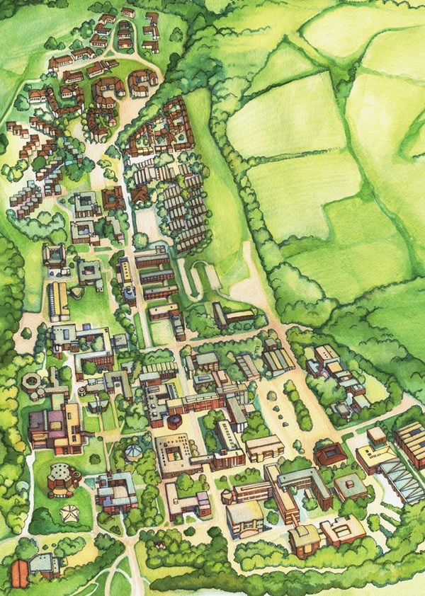 Illustrated Map of Sussex University Campus by Abigail Daker