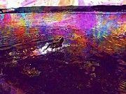 """New artwork for sale! - """" Dogs Float River Summer Sun Volga  by PixBreak Art """" - http://ift.tt/2uK0O2v"""