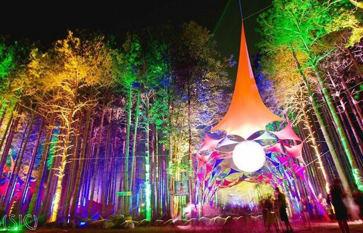 Electric forest festival.  Ok, if I have to pick one festival for 2014, this has got to be it.