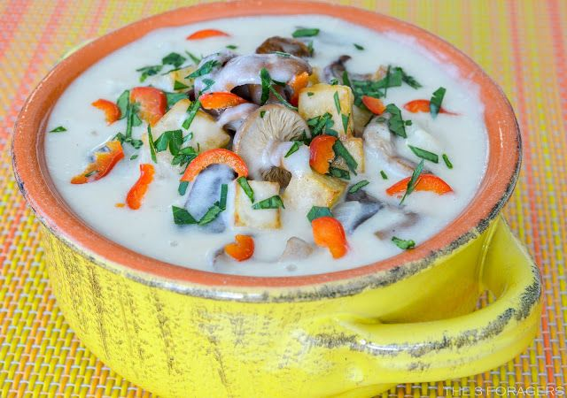 The 3 Foragers: Foraging for Wild, Natural, Organic Food: Milky Mushroom Chowder