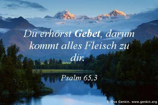 Du erhörst Gebet; darum kommt alles Fleisch zu dir. Psalm 65,3.