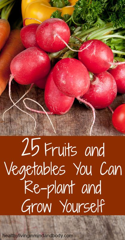 25 Fruits and Vegetables You Can Re-plant and Grow Yourself: