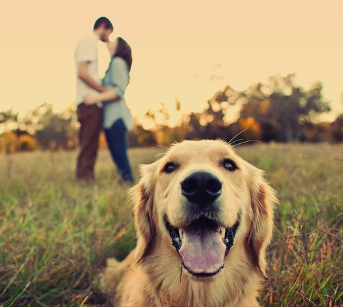 couple shot with their fuzzy child- I like this angle may try for Christmas card photos