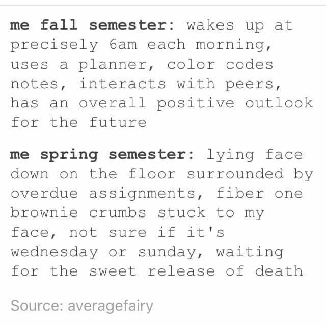 Seriously! Spring semester is just naturally impossible to survive. It's when uni's inner sadist comes out.