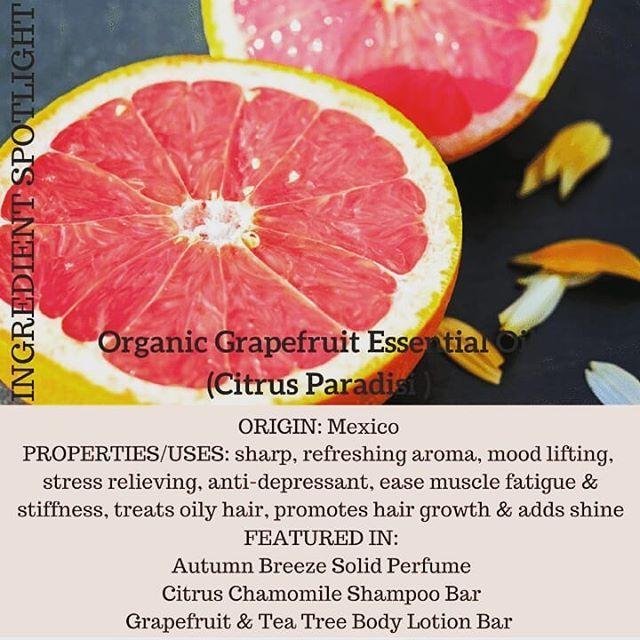 G R A P E F R U I T   P E P P E R M I N T  . . . . . #citrusscent #grapefruit #locallygrown #britishcolumbia #nature #haircare #facialcare #greenbeauty #plantbased #allnatural #beautyfinds #greenbeautyblogger #naturalhair #madeinvancouver #essentialoils #perfume #fresh #herbalskincare #citrus #botanicalbeauty #shampoobar #lotion #ecoluxe #sustainable #ecofriendly #greenliving #wildjasmine