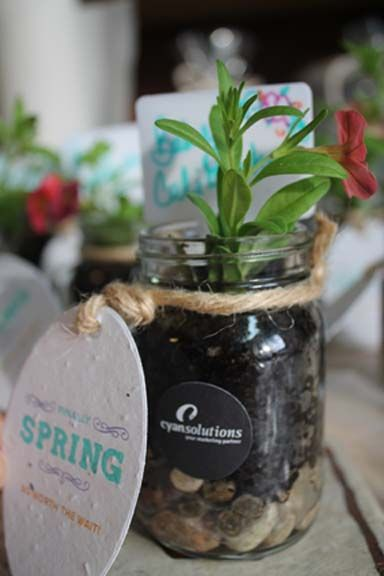 The final adorable little plant gift & our clients loved them!! #cyanspring #ottawa #marketing #giftsofgratitude