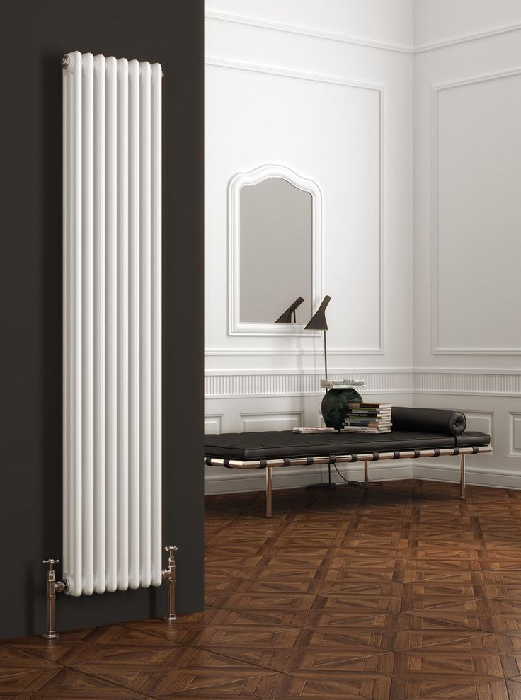 Tall radiator. http://www.ebay.co.uk/itm/NEW-RANGE-3-COLUMN-COLONA-VERTICAL-RADIATOR-200mm-x-1800mm-/160868725117