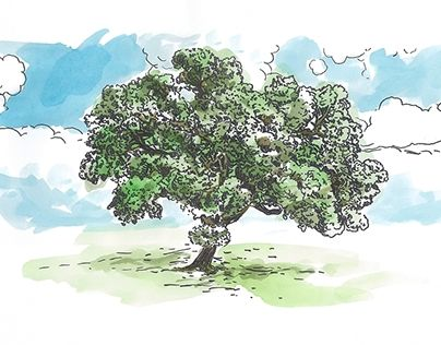 """Check out new work on my @Behance portfolio: """"Ilustrações """"31 dias com Maria"""""""" http://be.net/gallery/53365069/Ilustracoes-31-dias-com-Maria"""