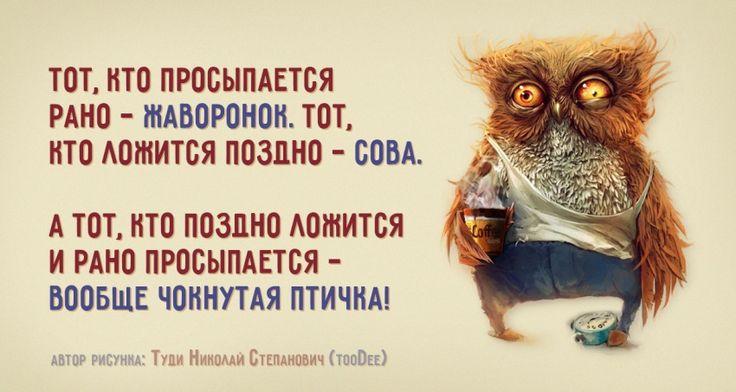 http://www.adme.ru/cards/choknutaya-ptichka-911860/