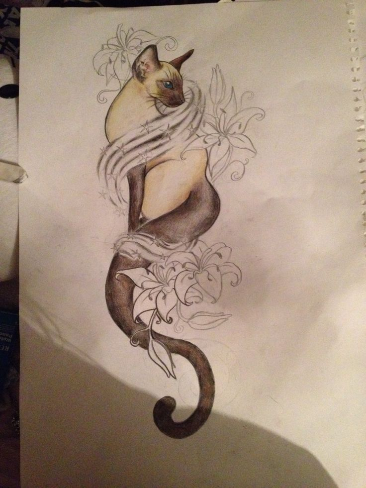 image result for siamese cat tattoo tattoos pinterest siamese cat tattoos tattoo and tatoos. Black Bedroom Furniture Sets. Home Design Ideas